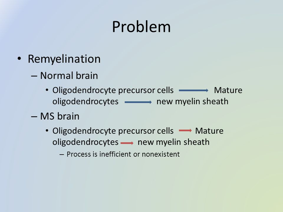 Problem Remyelination – Normal brain Oligodendrocyte precursor cells Mature oligodendrocytes new myelin sheath – MS brain Oligodendrocyte precursor cells Mature oligodendrocytes new myelin sheath – Process is inefficient or nonexistent