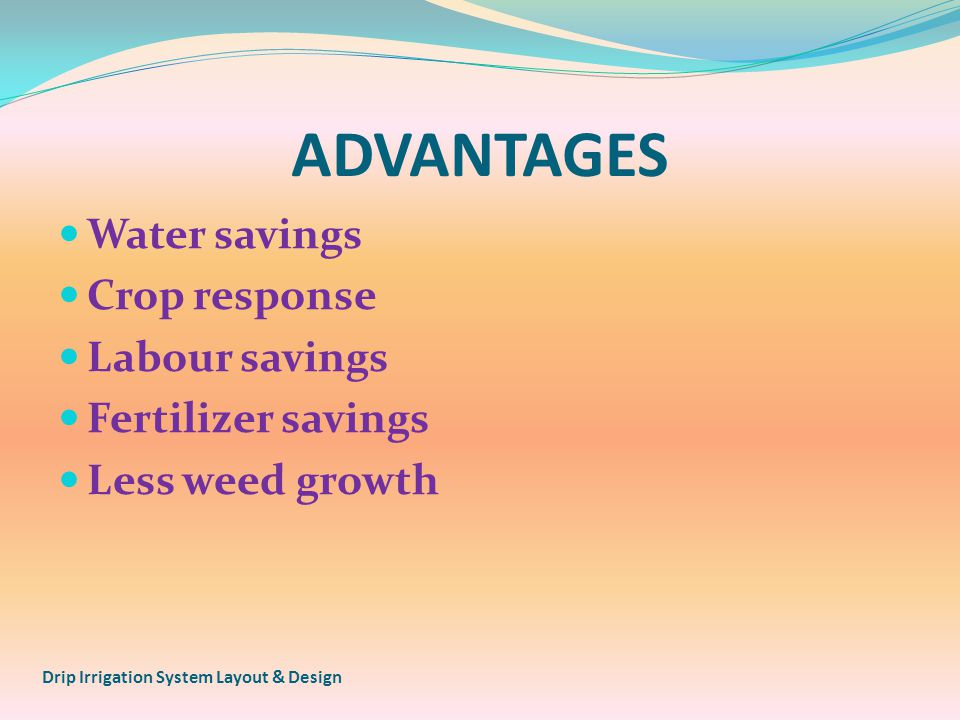 Saving in pesticides Possible use of saline water Early maturation Minimum soil crusting Field edge loss reduction Drip Irrigation System Layout & Design ADVANTAGES