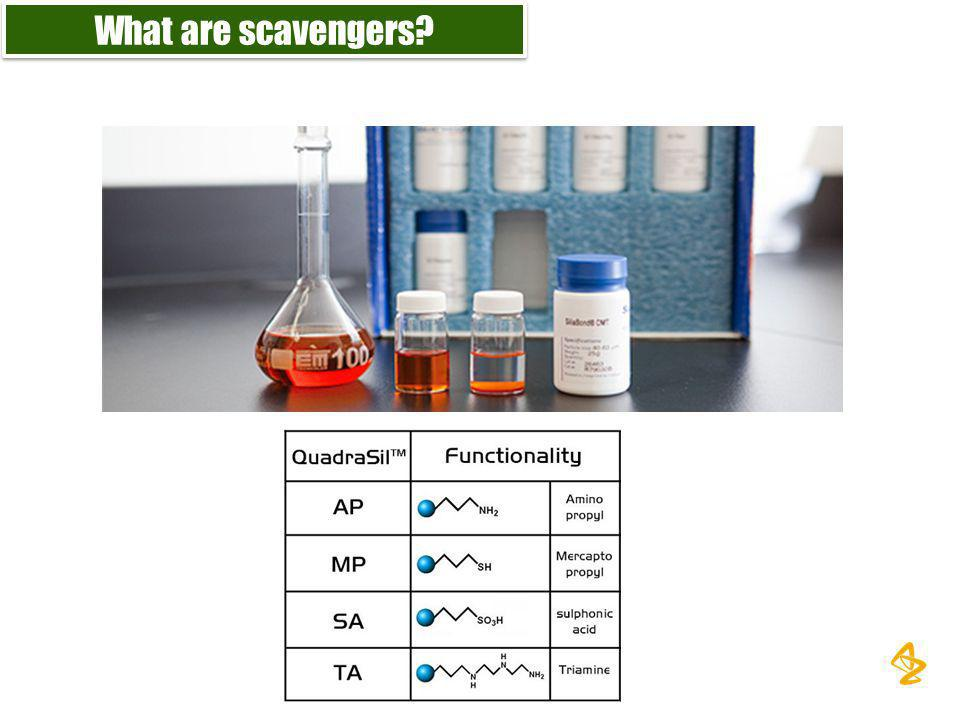 What are scavengers?