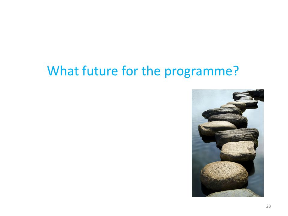 28 What future for the programme?