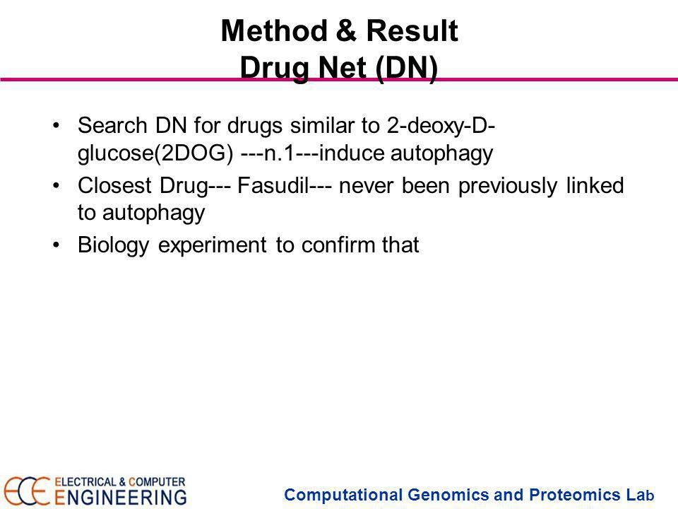 Computational Genomics and Proteomics La b Method & Result Drug Net (DN) Search DN for drugs similar to 2-deoxy-D- glucose(2DOG) ---n.1---induce autophagy Closest Drug--- Fasudil--- never been previously linked to autophagy Biology experiment to confirm that