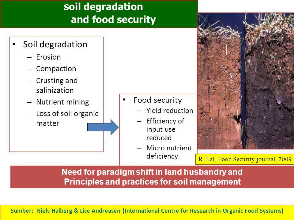 Soil degradation – Erosion – Compaction – Crusting and salinization – Nutrient mining – Loss of soil organic matter Food security – Yield reduction –