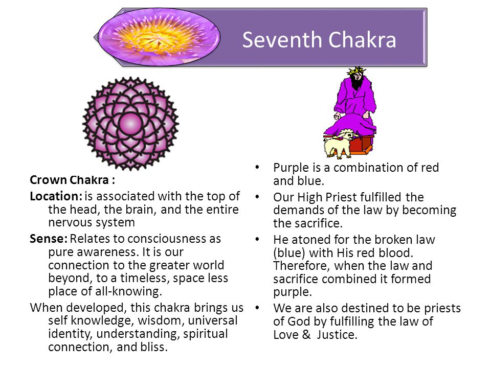 Crown Chakra : Location: is associated with the top of the head, the brain, and the entire nervous system Sense: Relates to consciousness as pure awareness.