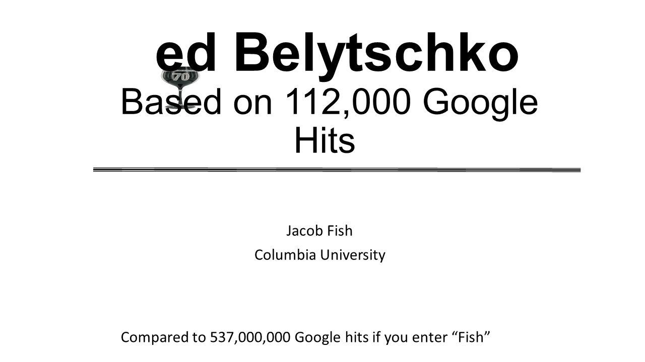 Enter Belytschko in Google Web Search