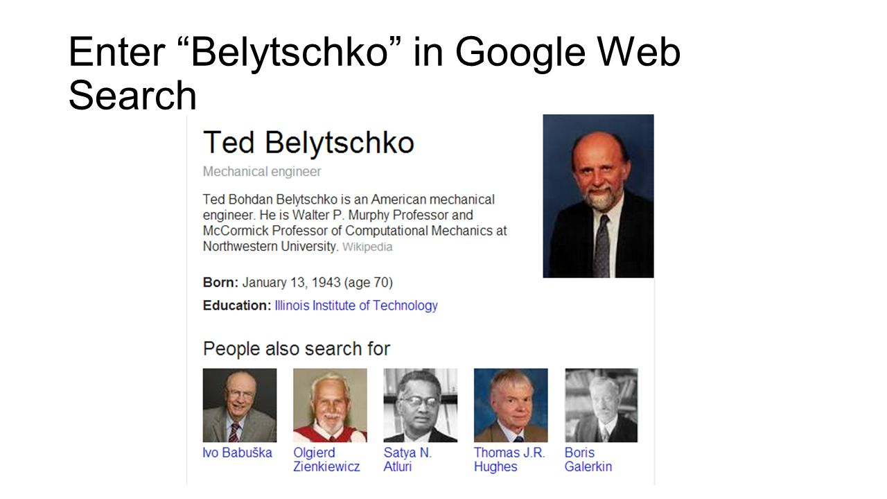 Enter Belytschko in Google Web Search