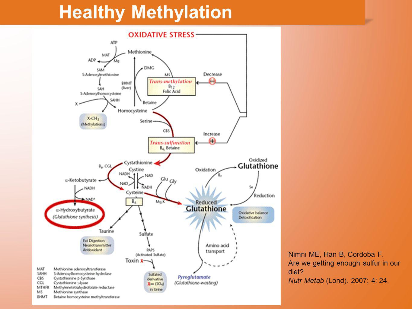 Healthy Methylation Nimni ME, Han B, Cordoba F.Are we getting enough sulfur in our diet.