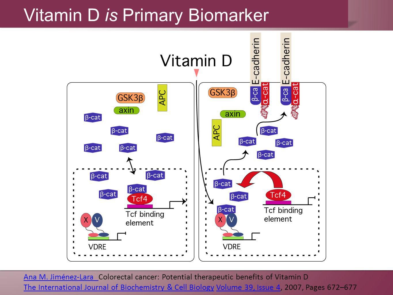 Ana M. Jiménez-Lara Ana M. Jiménez-Lara Colorectal cancer: Potential therapeutic benefits of Vitamin D The International Journal of Biochemistry & Cel