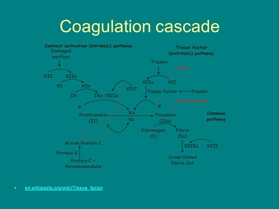 Coagulation cascade en.wikipedia.org/wiki/Tissue_factor