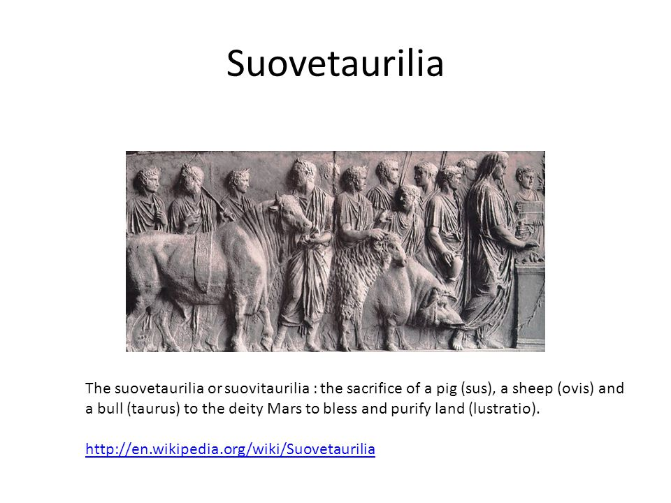 Suovetaurilia The suovetaurilia or suovitaurilia : the sacrifice of a pig (sus), a sheep (ovis) and a bull (taurus) to the deity Mars to bless and pur