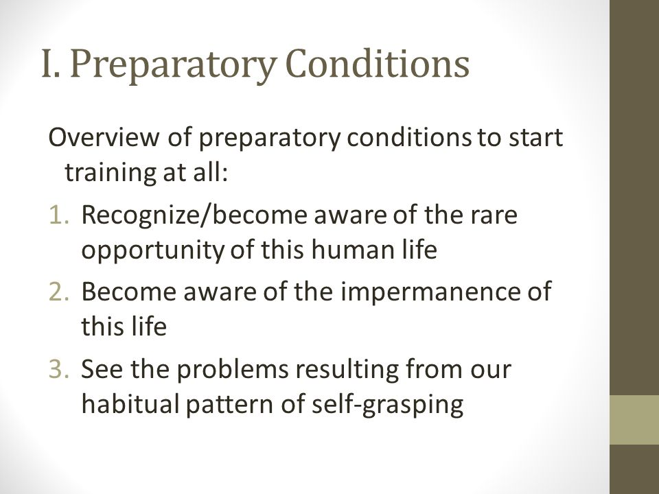 I. Preparatory Conditions Overview of preparatory conditions to start training at all: 1.Recognize/become aware of the rare opportunity of this human