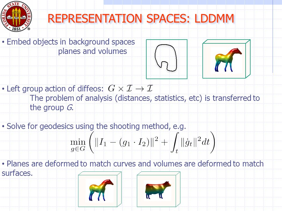 REPRESENTATION SPACES: LDDMM Embed objects in background spaces planes and volumes Left group action of diffeos: The problem of analysis (distances, statistics, etc) is transferred to the group G.