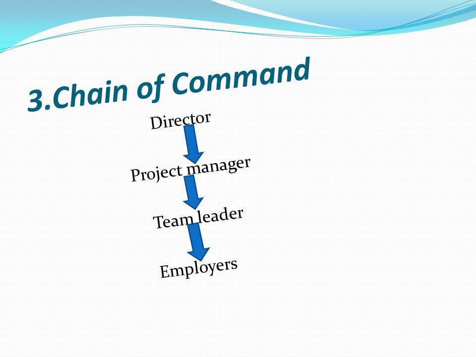 4.Span of control its a international company with about 22,000 workers They have many man powers and work is divided(advantage) Wider spans reduce effictiveness (disadvantage)