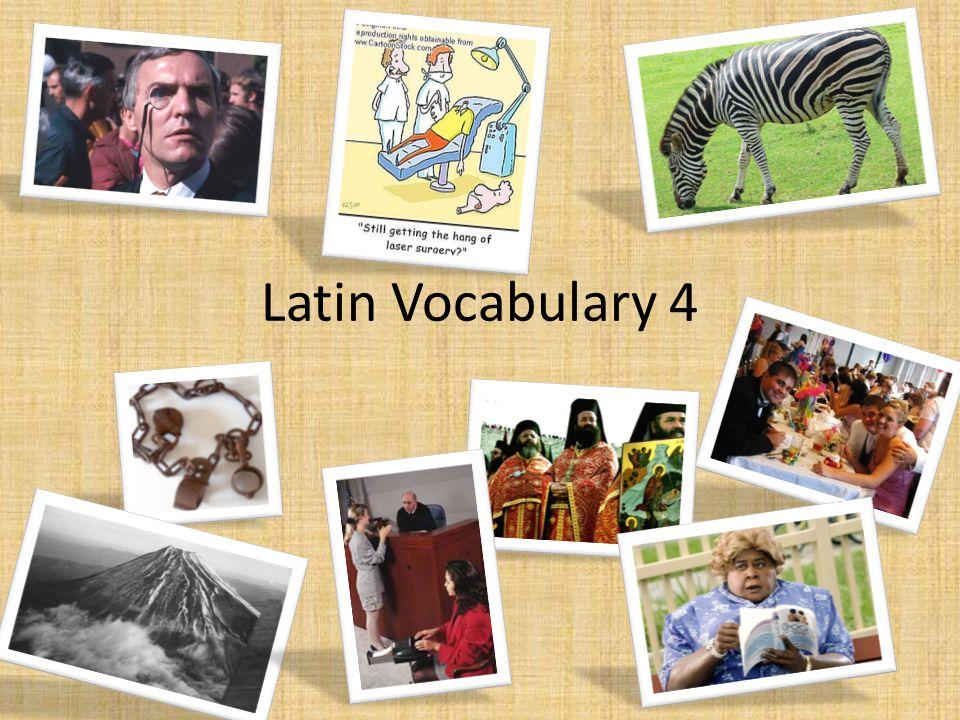 Latin Vocabulary 4
