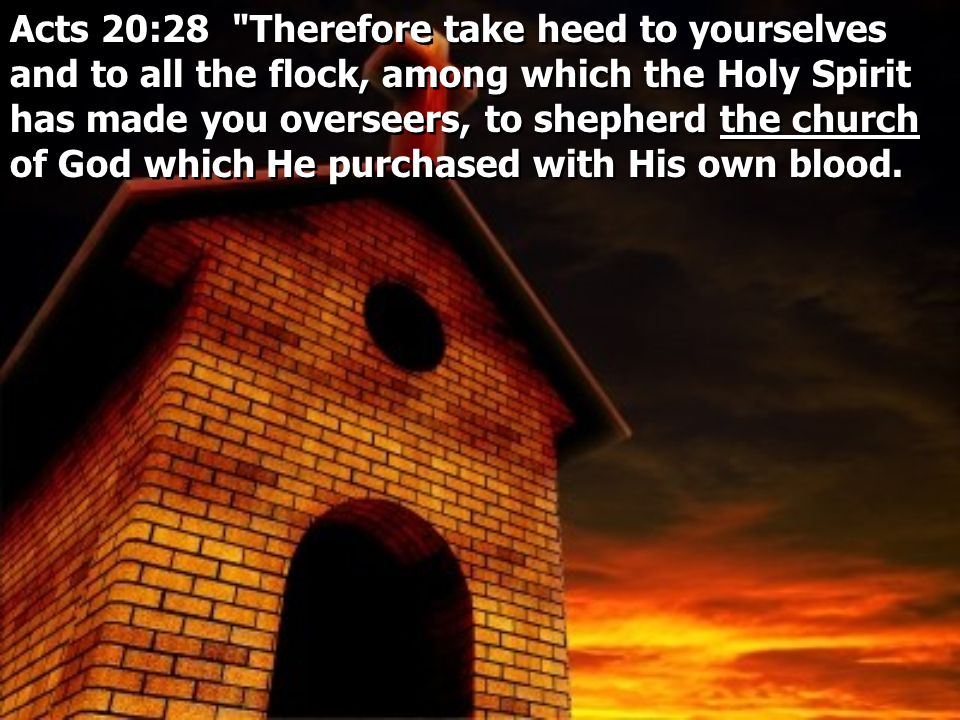 Acts 20:28 Therefore take heed to yourselves and to all the flock, among which the Holy Spirit has made you overseers, to shepherd the church of God which He purchased with His own blood.