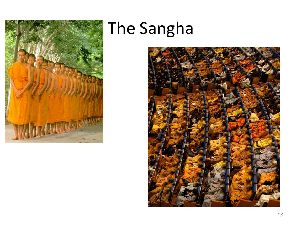 The Sangha 23