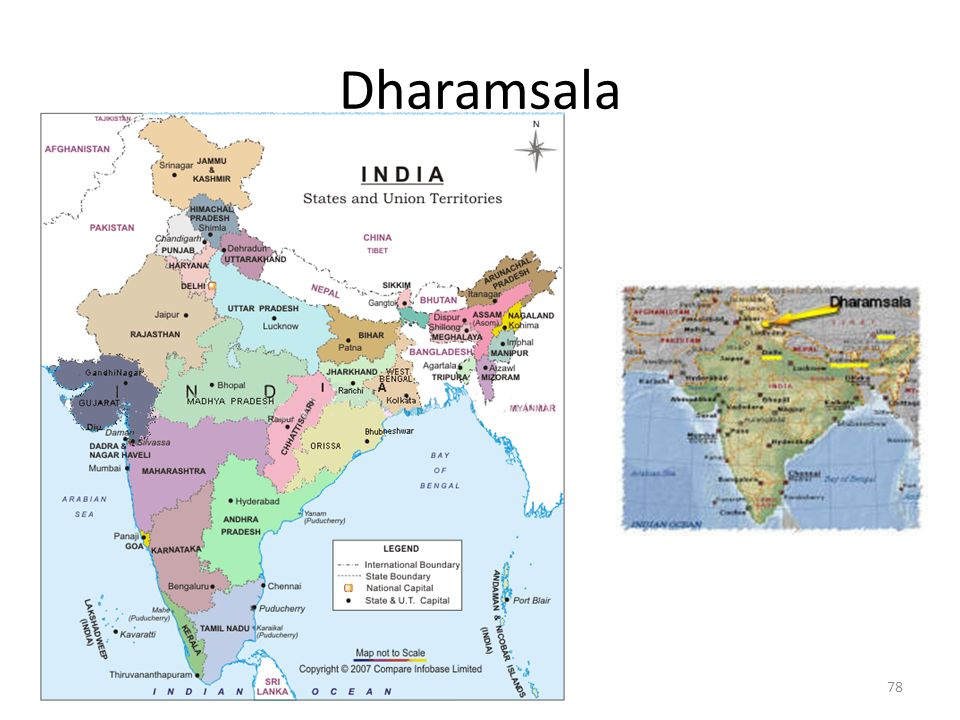 Dharamsala 78