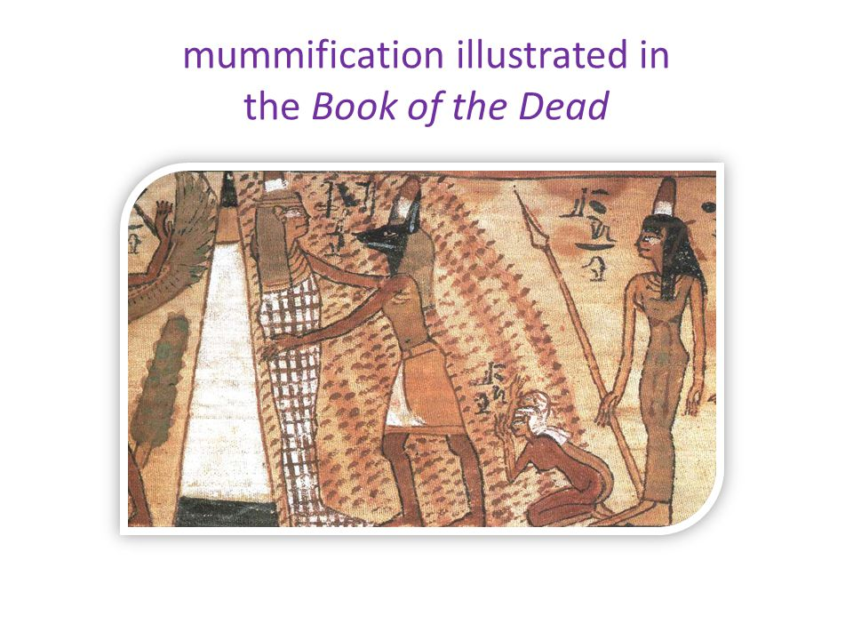 mummification illustrated in the Book of the Dead