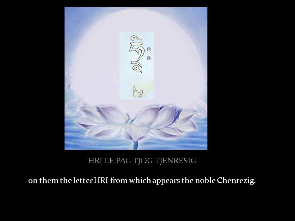 TJI TSUG PE KAR DAWAI TENG …a white lotus and moon disc…