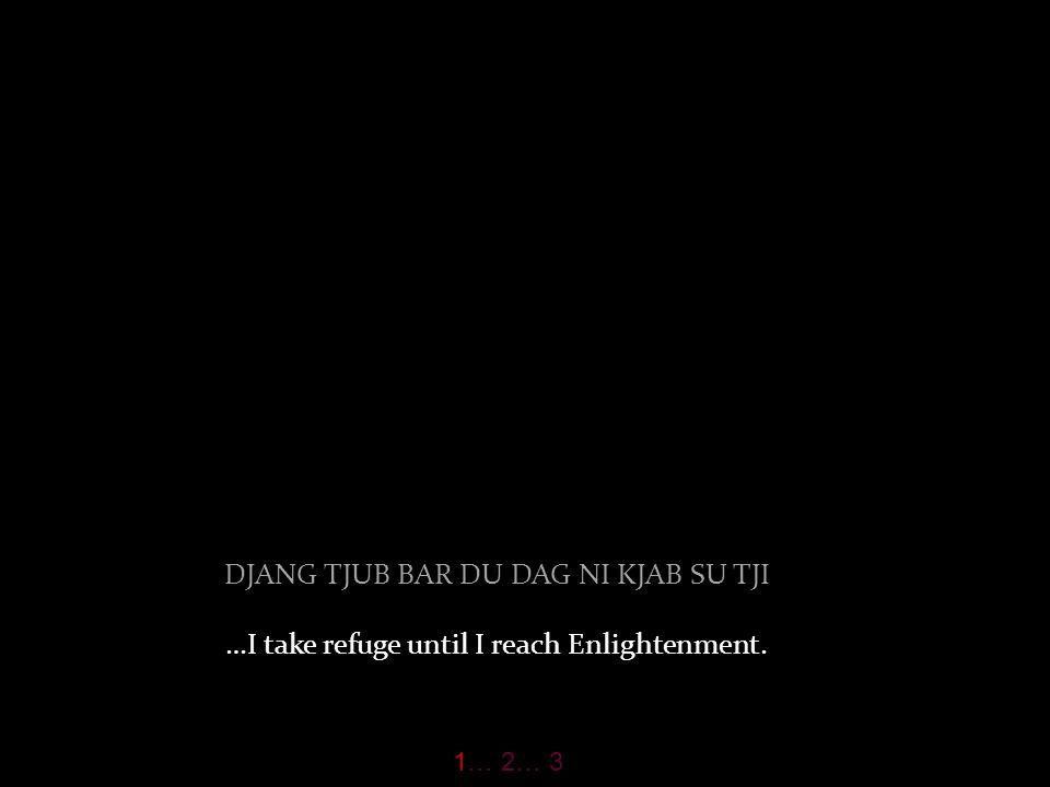 DJANG TJUB BAR DU DAG NI KJAB SU TJI …I take refuge until I reach Enlightenment. 1… 2… 3