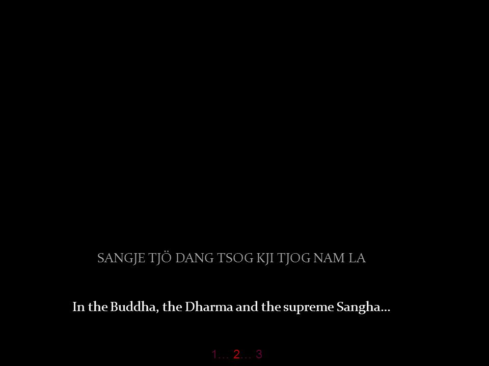 DRO LA PEN TJIR SANGJE DRUB PAR SHOG may I attain Buddhahood for the benefit of beings. 1… 2… 3