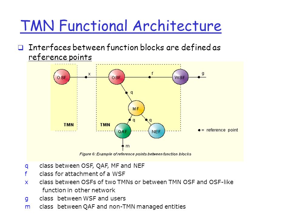 TMN Functional Architecture  Interfaces between function blocks are defined as reference points qclass between OSF, QAF, MF and NEF fclass for attachment of a WSF xclass between OSFs of two TMNs or between TMN OSF and OSF-like function in other network gclass between WSF and users mclass between QAF and non-TMN managed entities
