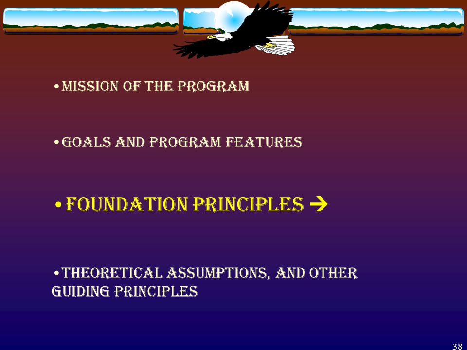 37 SECTION II. FOUNDATIONS OF THE TENRM PROGRAM