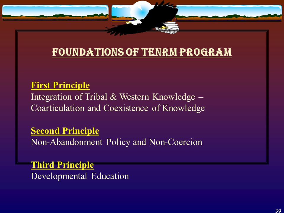 38 Mission of the Program Goals and Program Features Foundation Principles  Theoretical Assumptions, and Other Guiding Principles