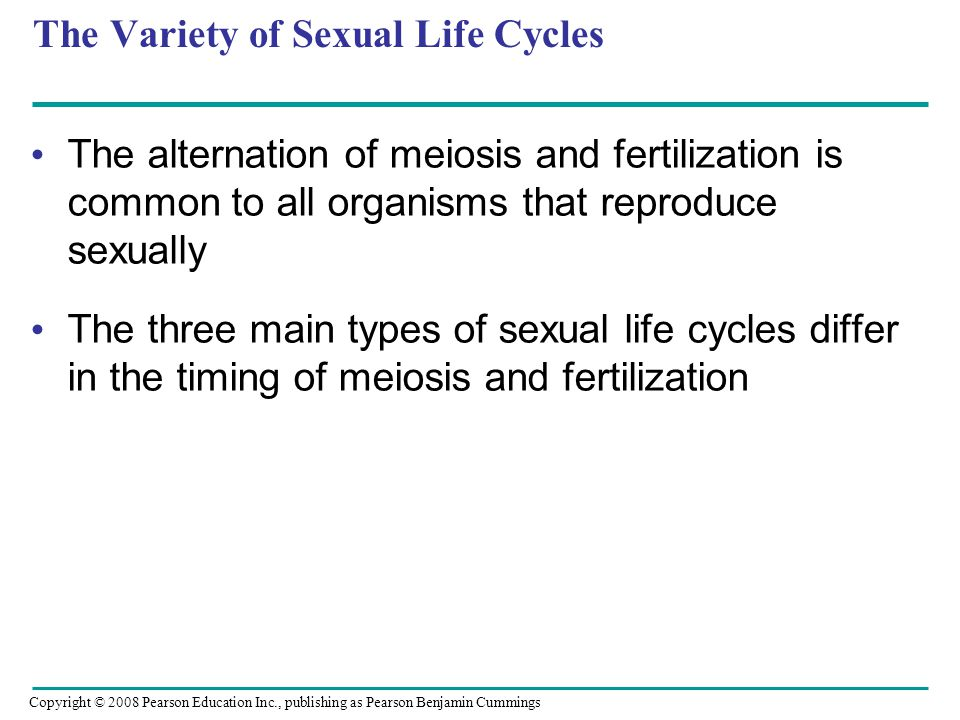 The Variety of Sexual Life Cycles The alternation of meiosis and fertilization is common to all organisms that reproduce sexually The three main types