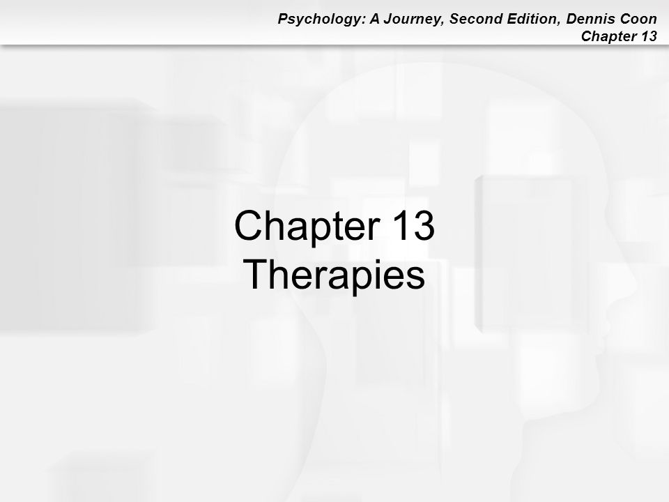 Psychology: A Journey, Second Edition, Dennis Coon Chapter 13 Other Therapy Options Peer Counselor: Nonprofessional person who has learned basic counseling skills Self-Help Group: Group of people who share a particular type of problem and provide mutual support to each other (e.g., Alcoholics Anonymous )