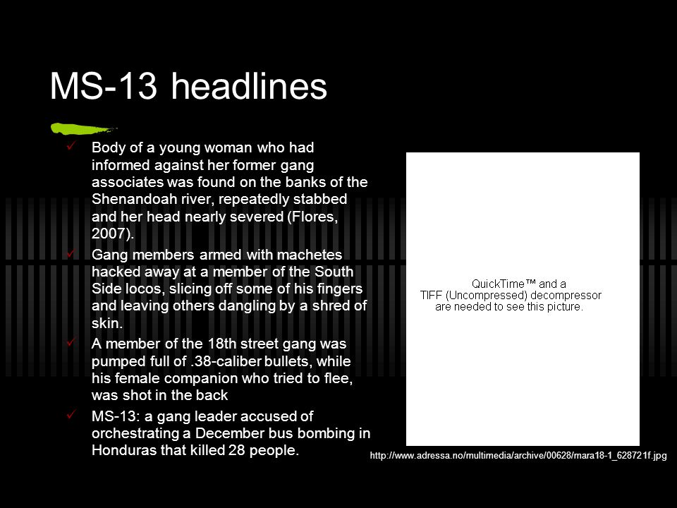 MS-13 headlines Body of a young woman who had informed against her former gang associates was found on the banks of the Shenandoah river, repeatedly stabbed and her head nearly severed (Flores, 2007).