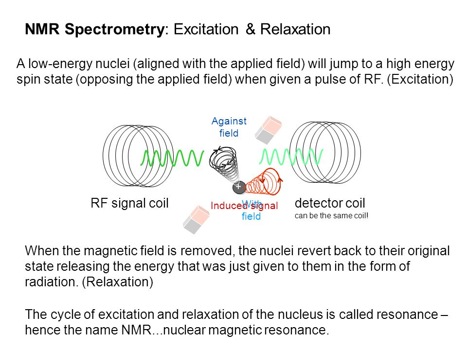 A low-energy nuclei (aligned with the applied field) will jump to a high energy spin state (opposing the applied field) when given a pulse of RF. (Exc