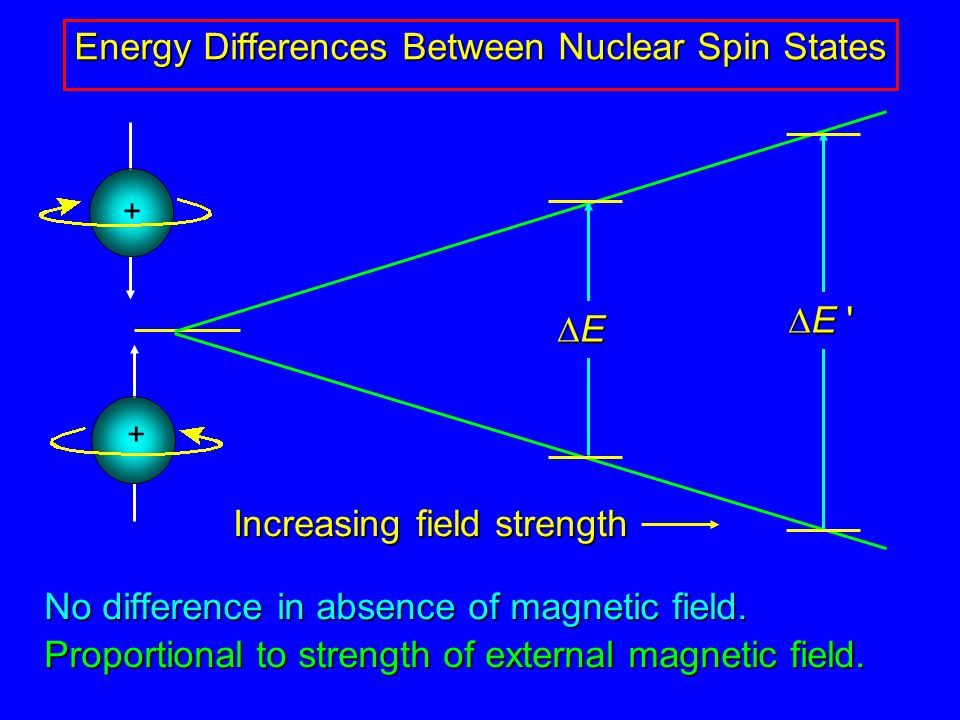 No difference in absence of magnetic field. Proportional to strength of external magnetic field.