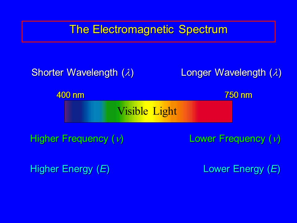 The Electromagnetic Spectrum 400 nm 750 nm Visible Light Longer Wavelength ( ) Shorter Wavelength ( ) Higher Frequency ( ) Lower Frequency ( ) Higher Energy (E) Lower Energy (E)