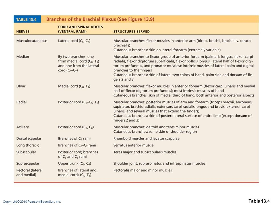 Copyright © 2010 Pearson Education, Inc. Table 13.4