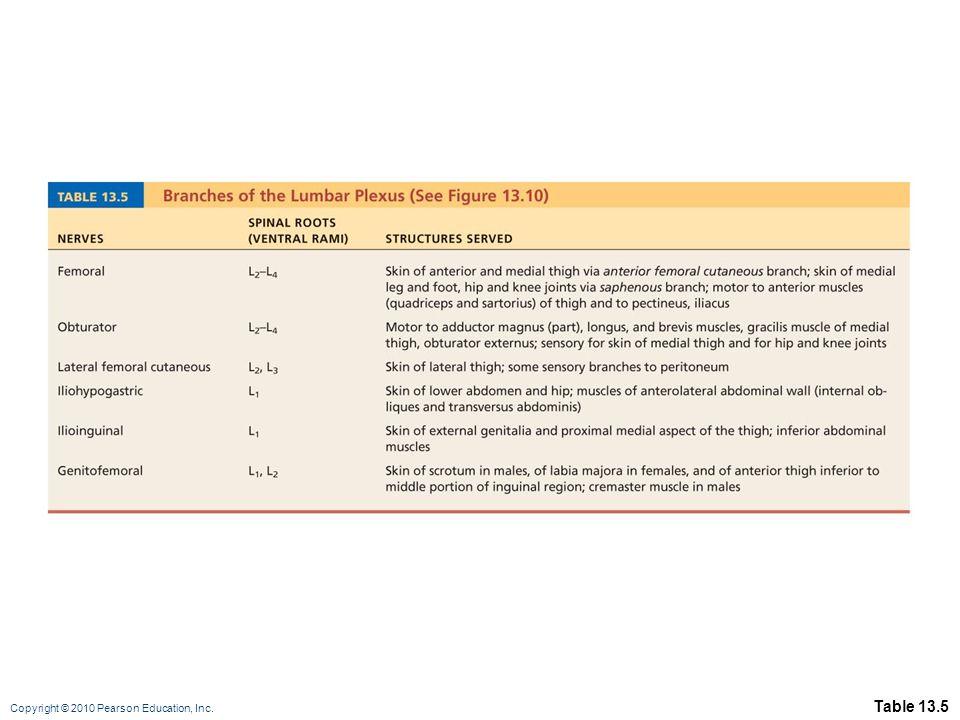 Copyright © 2010 Pearson Education, Inc. Table 13.5