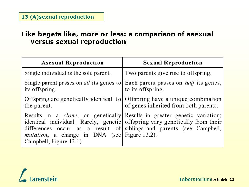 Laboratorium techniek 12 13 (A)sexual reproduction Like begets like, more or less: a comparison of asexual versus sexual reproduction