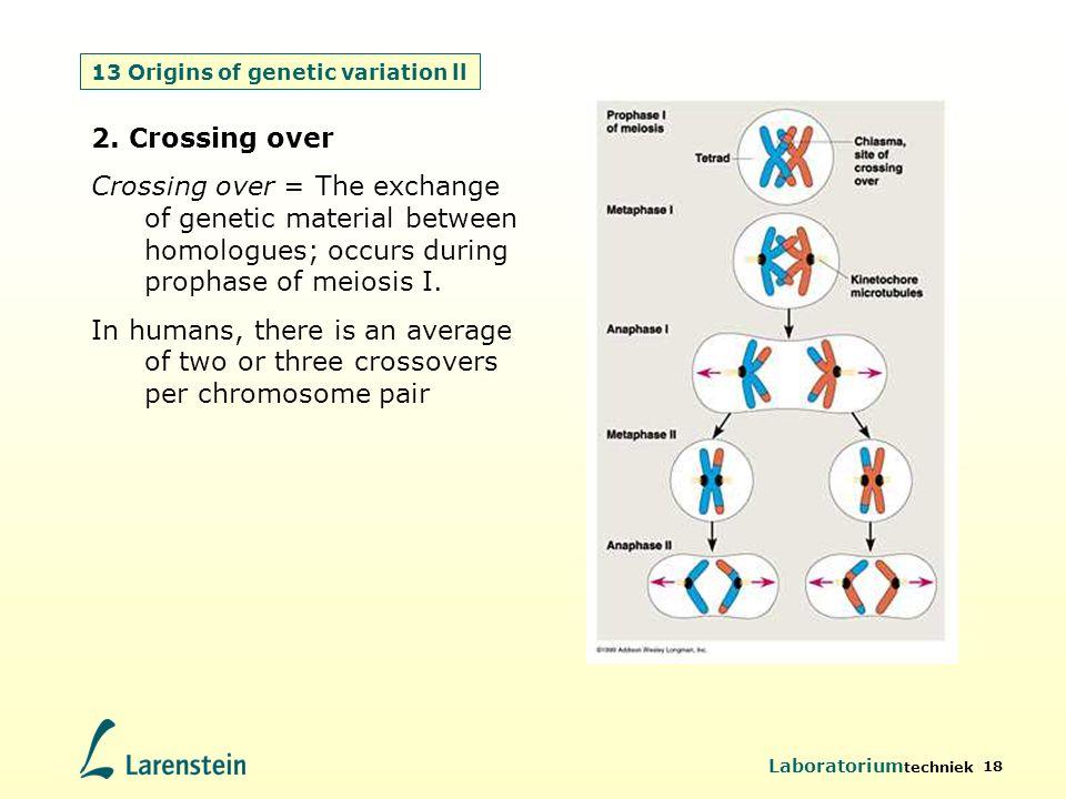 Laboratorium techniek 18 13 Origins of genetic variation ll 2. Crossing over Crossing over = The exchange of genetic material between homologues; occu