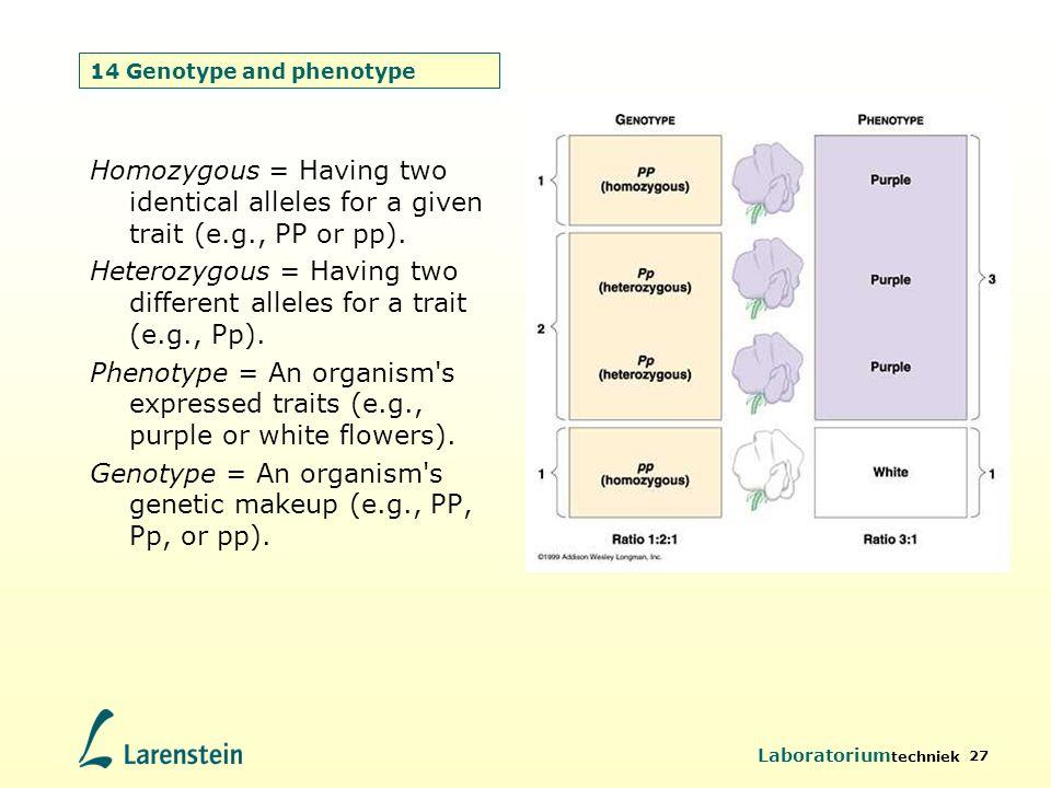 Laboratorium techniek 27 14 Genotype and phenotype Homozygous = Having two identical alleles for a given trait (e.g., PP or pp). Heterozygous = Having
