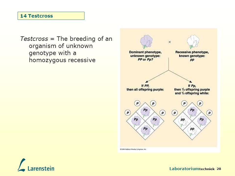 Laboratorium techniek 28 14 Testcross Testcross = The breeding of an organism of unknown genotype with a homozygous recessive