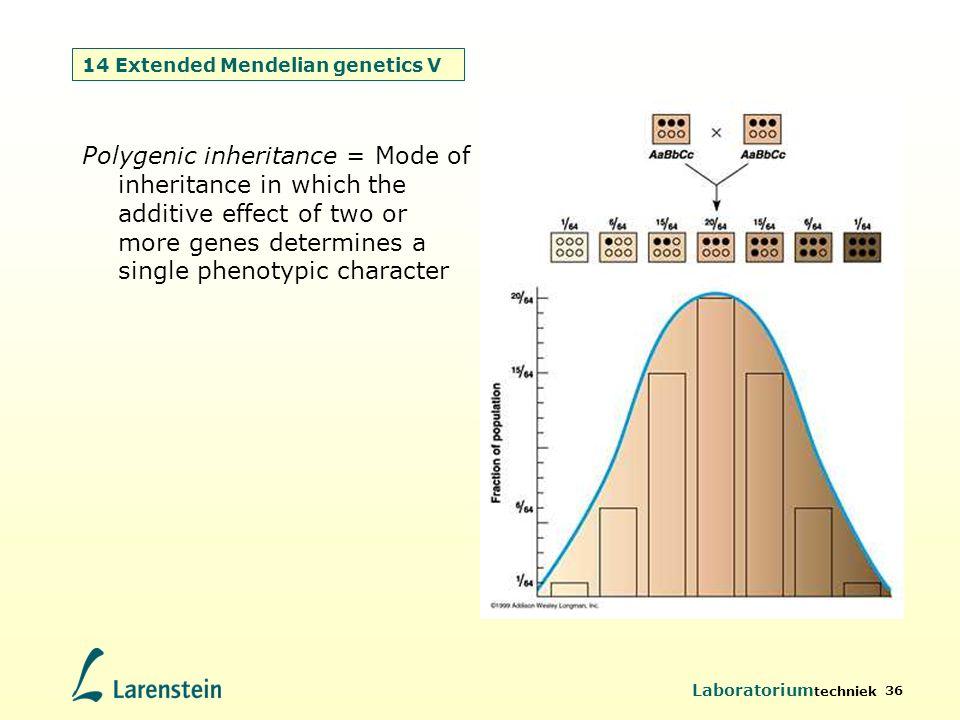 Laboratorium techniek 36 14 Extended Mendelian genetics V Polygenic inheritance = Mode of inheritance in which the additive effect of two or more gene