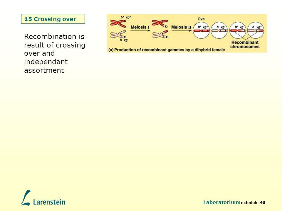 Laboratorium techniek 48 15 Crossing over Recombination is result of crossing over and independant assortment