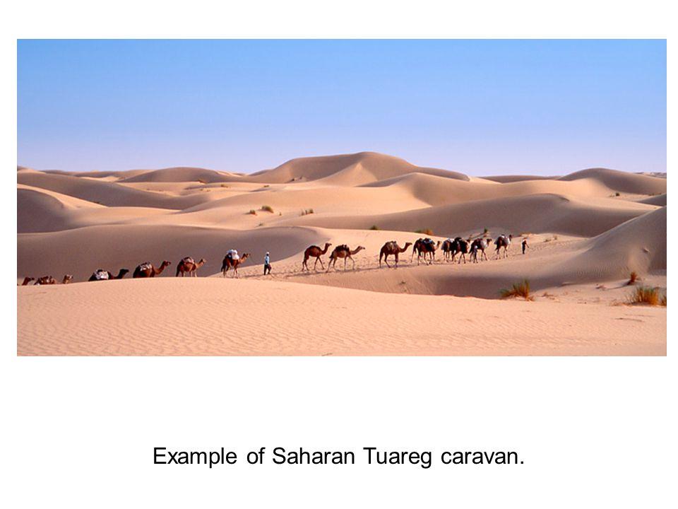 Ibn Battuta was a Moroccan Berber, Islamic scholar, and traveler.
