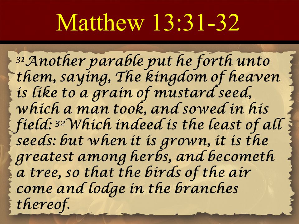 Matthew 13:31-32 31 Another parable put he forth unto them, saying, The kingdom of heaven is like to a grain of mustard seed, which a man took, and so