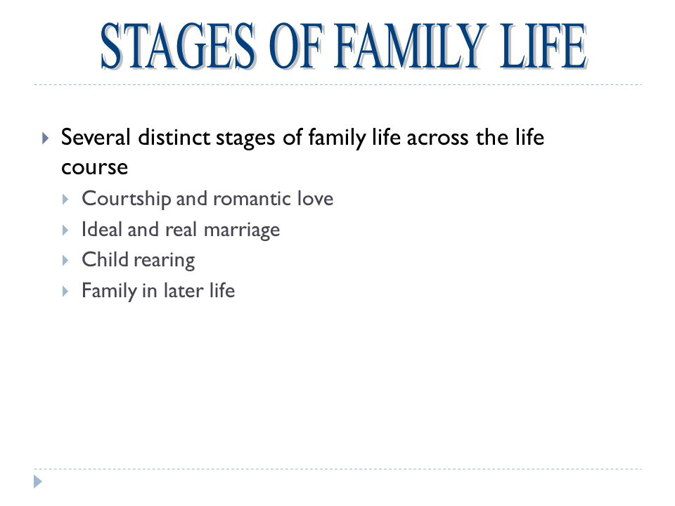 Remarriage and Blended Families  Four out of five people who divorce remarry  Blended Families  Composed of children and some combination of biological parents and step-parents  Blended families must define who is part of the nuclear family  Adjustments are necessary  Offer both young and old the chance to relax rigid family roles