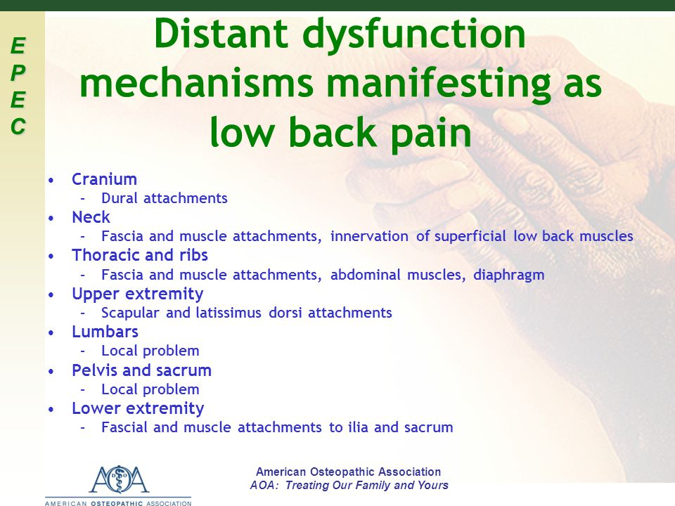 EPECEPECEPECEPEC American Osteopathic Association AOA: Treating Our Family and Yours Distant dysfunction mechanisms manifesting as low back pain Crani