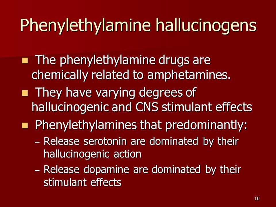 16 Phenylethylamine hallucinogens The phenylethylamine drugs are chemically related to amphetamines. The phenylethylamine drugs are chemically related