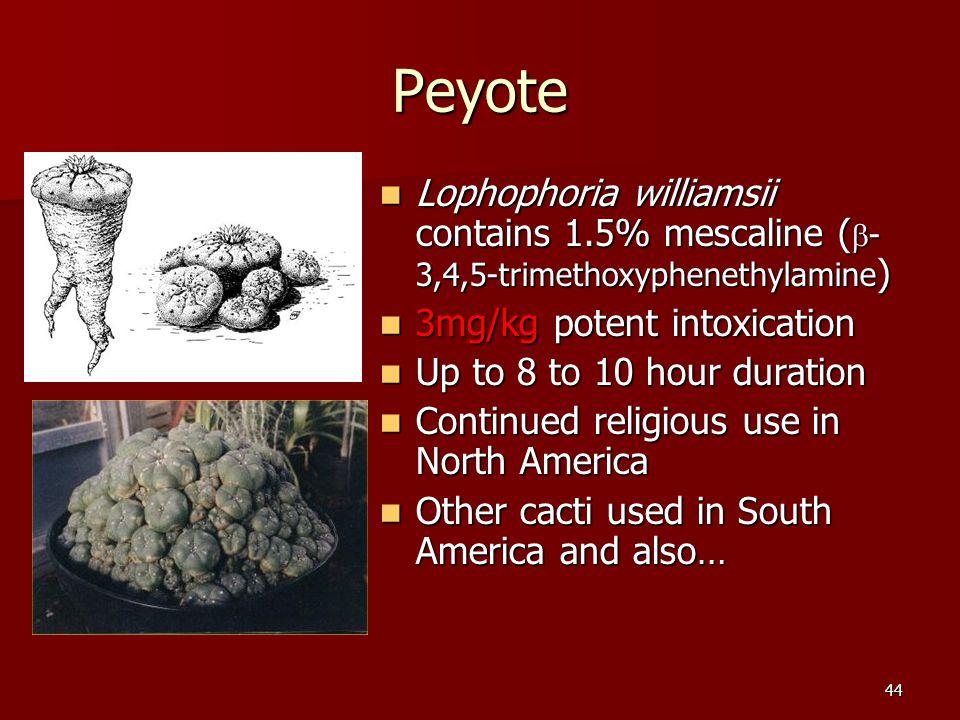 44 Peyote Lophophoria williamsii contains 1.5% mescaline (  - 3,4,5-trimethoxyphenethylamine ) Lophophoria williamsii contains 1.5% mescaline (  - 3,4,5-trimethoxyphenethylamine ) 3mg/kg potent intoxication 3mg/kg potent intoxication Up to 8 to 10 hour duration Up to 8 to 10 hour duration Continued religious use in North America Continued religious use in North America Other cacti used in South America and also… Other cacti used in South America and also…