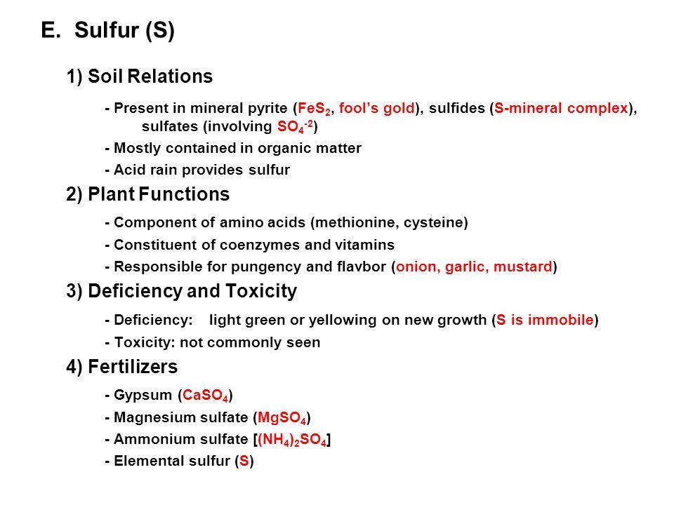 E. Sulfur (S) 1) Soil Relations - Present in mineral pyrite (FeS 2, fool's gold), sulfides (S-mineral complex), sulfates (involving SO 4 -2 ) - Mostly