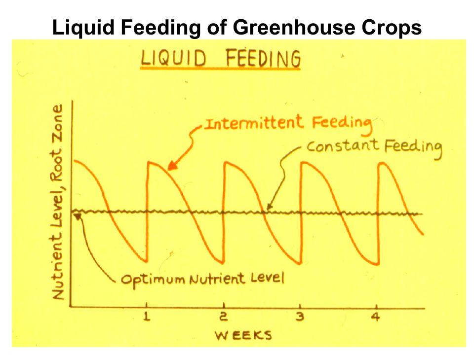Liquid Feeding of Greenhouse Crops