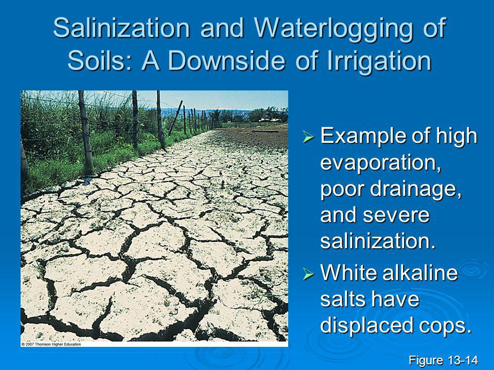 Salinization and Waterlogging of Soils: A Downside of Irrigation  Example of high evaporation, poor drainage, and severe salinization.